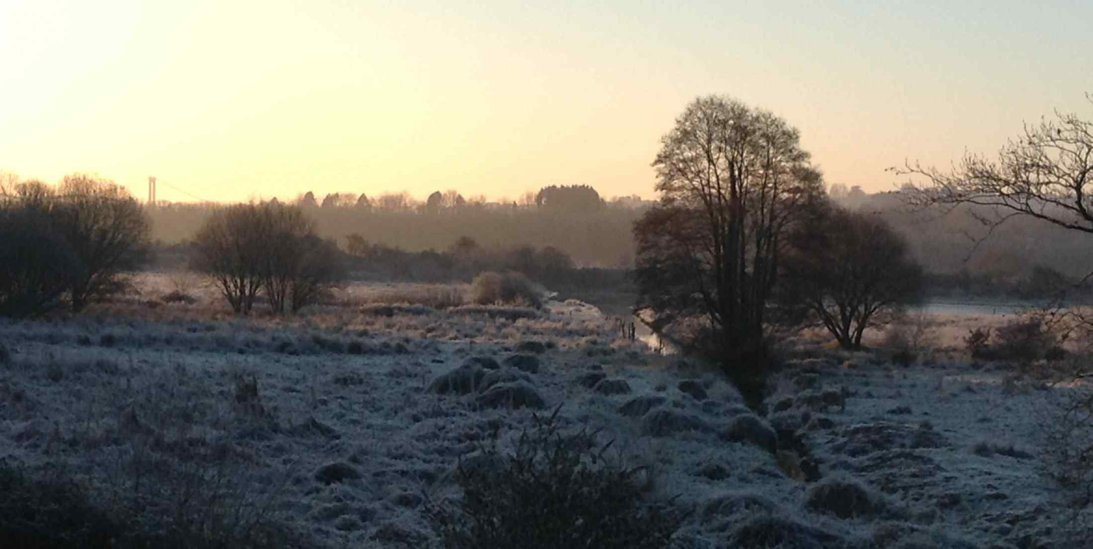Frosty morning on the Salt Marsh