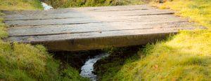 Bridge into Orchard