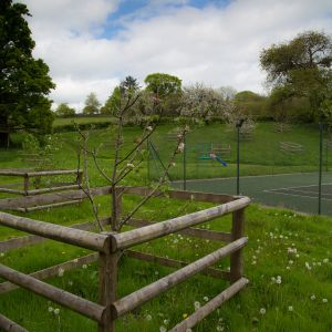 Orchard overlooking the Tennis Court